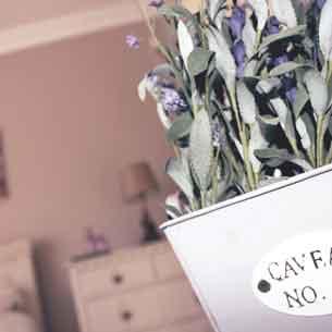 beaufort house new ross